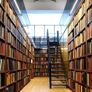Библиотеки Каменногорска