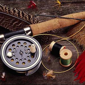 Охотничьи и рыболовные магазины Каменногорска