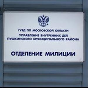 Отделения полиции Каменногорска