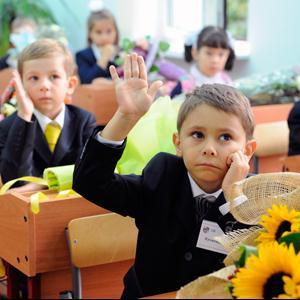 Школы Каменногорска